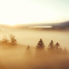Рассветный туман...(из архива)...