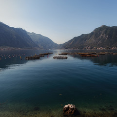 Боко Которский залив... Черногория!