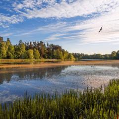 Лесное озеро на закате.