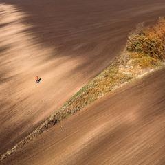 Осенний фотограф