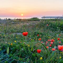 Захід сонця на пляжі Лара