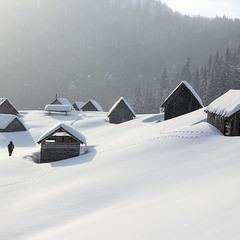 Зима на полонині