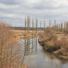 Весна на річці Стир