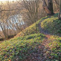 Над рікою Стир