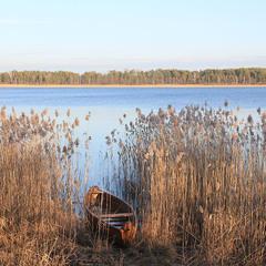 Озеро на Поліссі