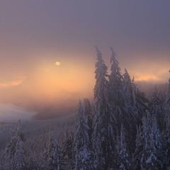 Вікно світанку