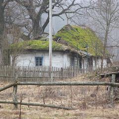 Стара хата під стріхою