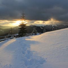 Зимовий Станимир