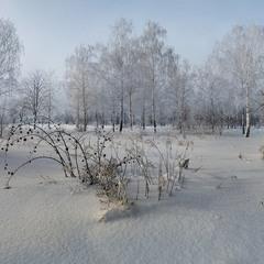 Морозный денек