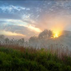 Солнце купалось в рассветном тумане-3