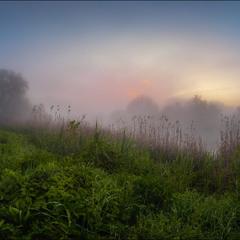 Солнце купалось в рассветном тумане