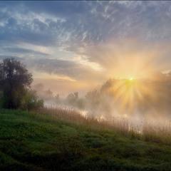 Солнце купалось в рассветном тумане-2