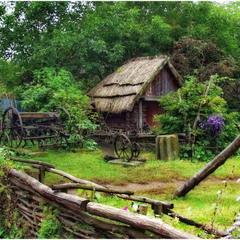 Сельское подворье.