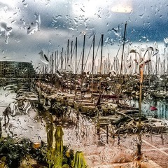 Herzlia Marina. In the rain.