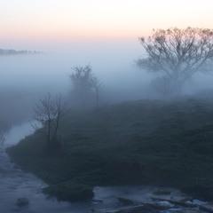 Утопая в тумане...