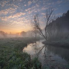 Утро у реки...