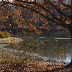 Одним словом, Осень!