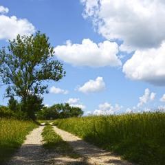 Пейзаж с облачками