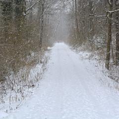 По дороге зимней, скучной...