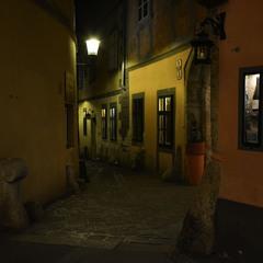 Вена, ночь...
