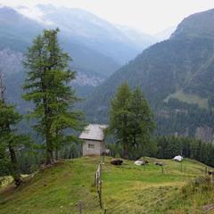 О простом австрийском хозяйстве