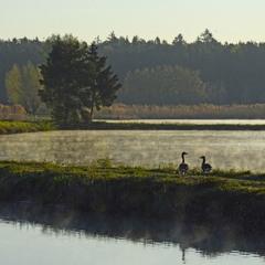 На фоне озера снимается семейство