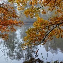 Осенние поклоны