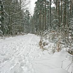 Зиме дорогу!