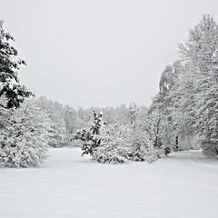 Зима, однако!..