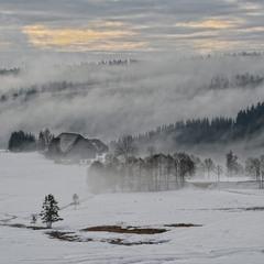 Зимние туманы