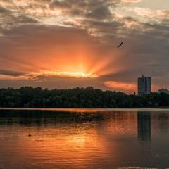 Про закат, чайку и круги на воде