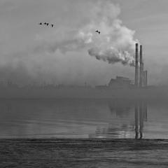 Туманно - промислово-річкове