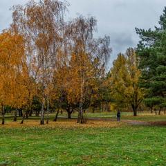 Стежка в осінь