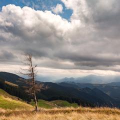 Погляд на Чорногору
