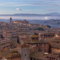 Roofs of Siena morning