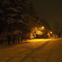 Зимове