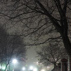 Туманний вечір