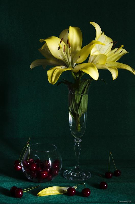 смотря всю картинки черная лилия в вазе или простой