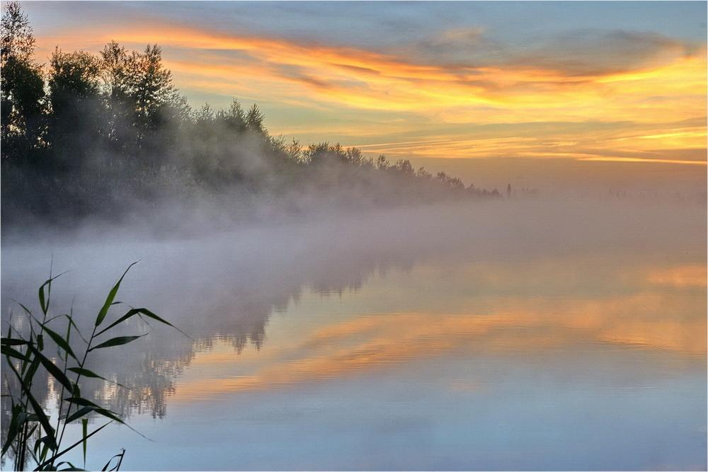это картинки утра туманного более полувека
