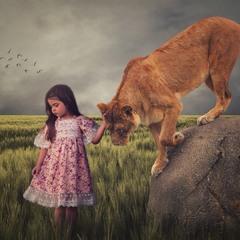 Девочка и львица