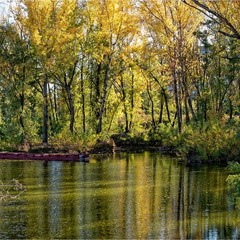 Октябрьская затока
