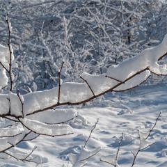 Творение дизайнера по имени Зима_2