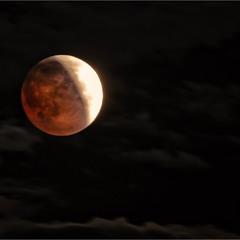 Кровавая луна