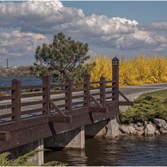 Мост в весну