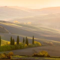 Залитая солнцем Тоскана
