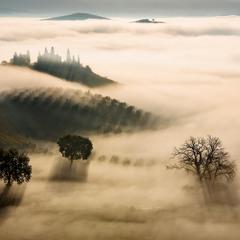 Мистический туман.