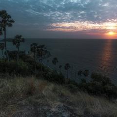 Пальмовый спуск