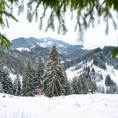 Зимове вбрання