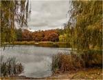 Осень на пруду...