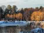Спокойствие зимнего парка.